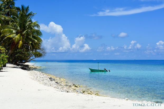 Angelausflüge Malediven