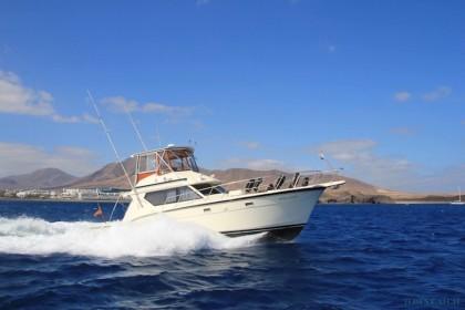 Aura Marina Playa Blanca angeln