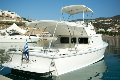Bertram 31ft Fishing Mirabello Bay  angeln