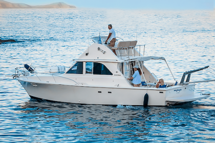 Bertram 35ft Fishing Crete Island Griechenland angeln