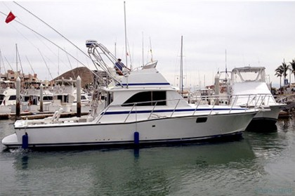 Angel Charter Bertram 42