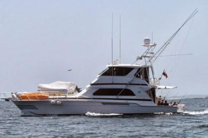 Bertram 60 Panama angeln