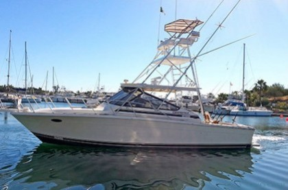 Black Fin 40 Baja California Sur angeln