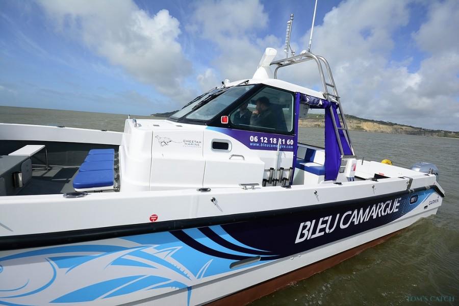 Angel Charter Bleu Camargue