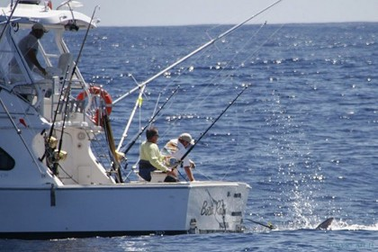 Boca Raton Madeira angeln
