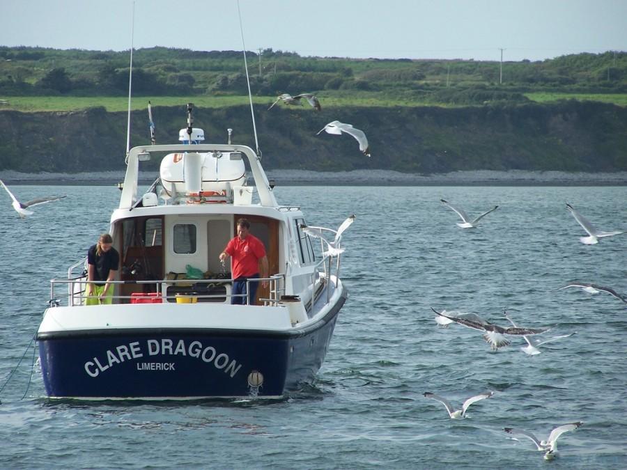 Geführte Angeltouren Clare Dragoon