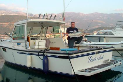 Galex Fish  angeln
