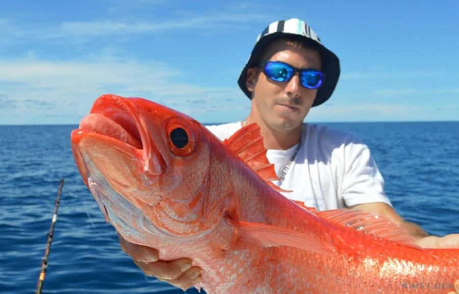 Geführte Angeltouren Open Fishing 8M5