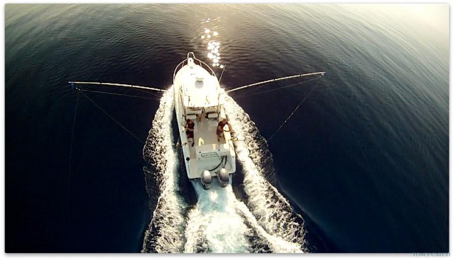 Geführte Angeltouren Pursuit 2570 Offshore