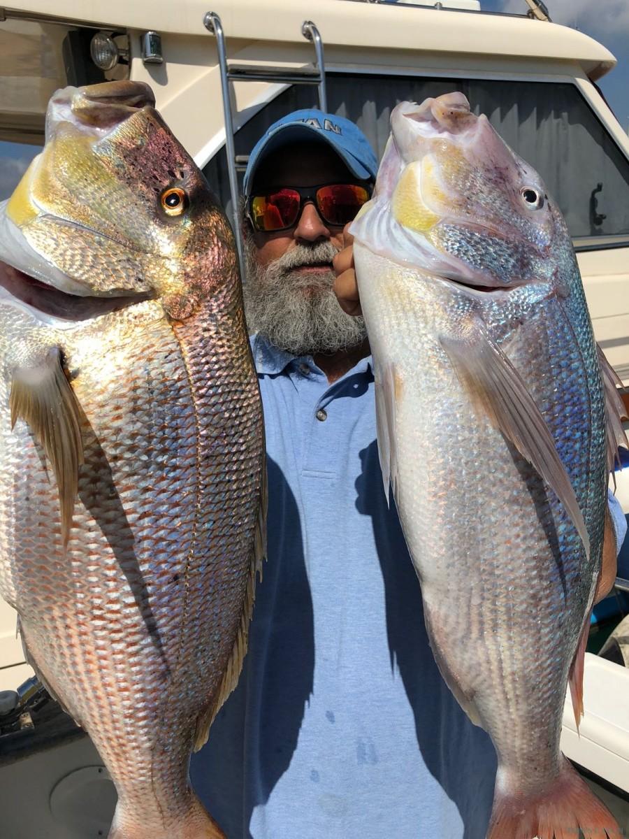 Fishing Charter Sciallino 34