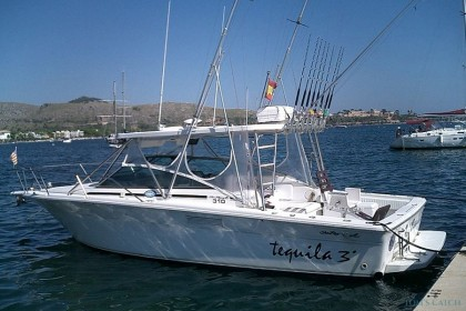 Angel Charter Sea Ray