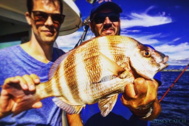 Grundfischen