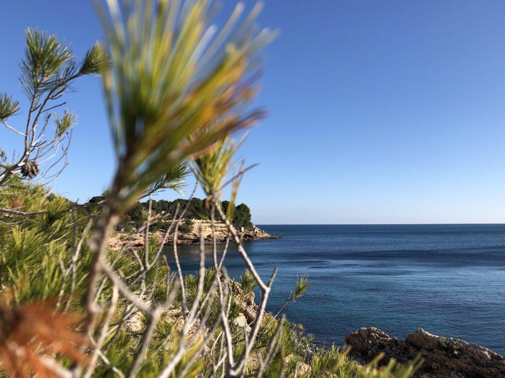 Bay in l'Ametlla de Mar