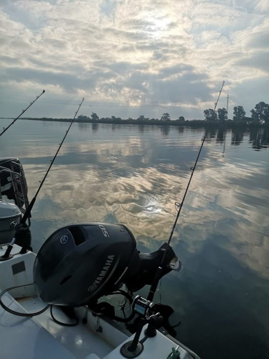 Ebro Delta fishing in October 2019