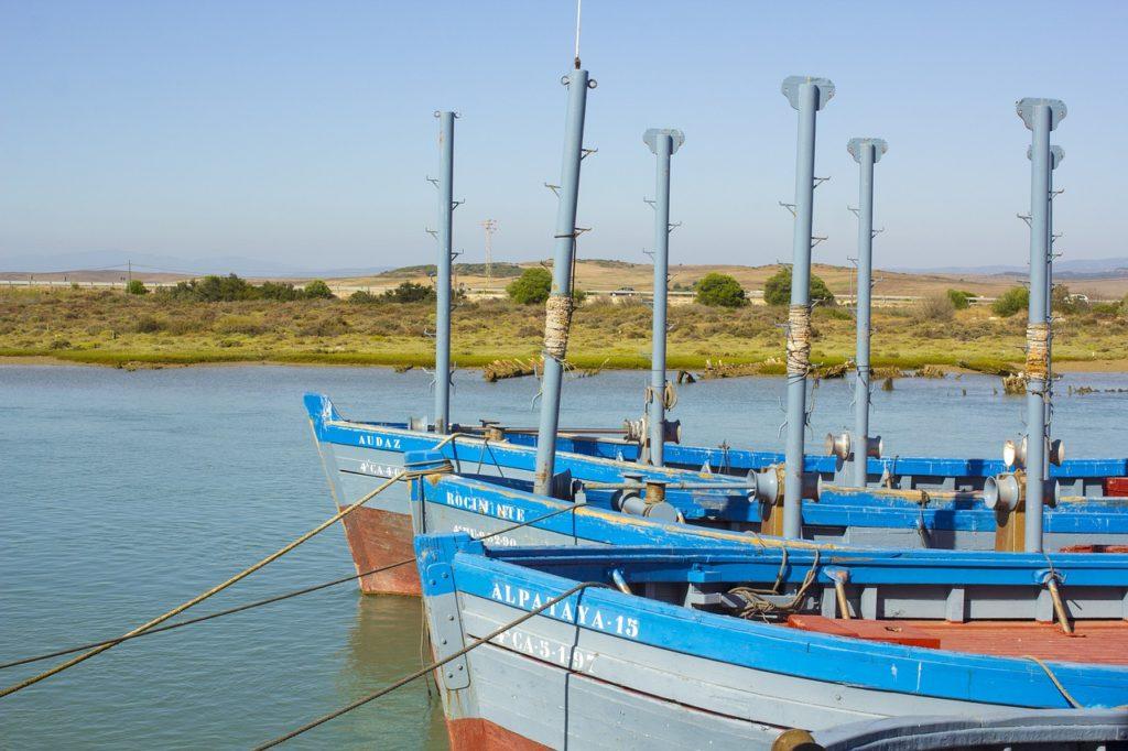 Almadraba tuna fishing in Barbate Spain