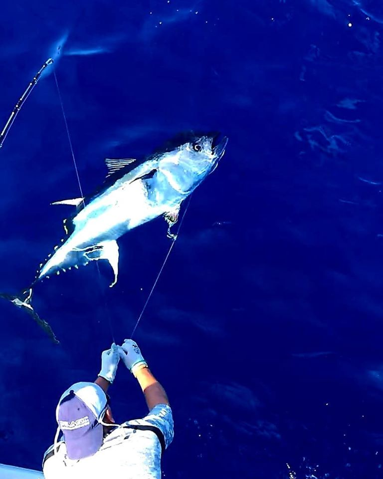 Thunfisch Angelreise Mallorca