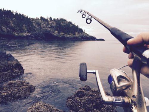 Long fishing pole