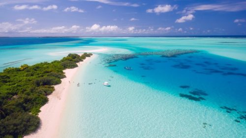 The Maldives, ultimate fishing destination in the Indian Ocean