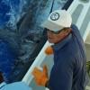 Avatar del capitán del charter Anibal