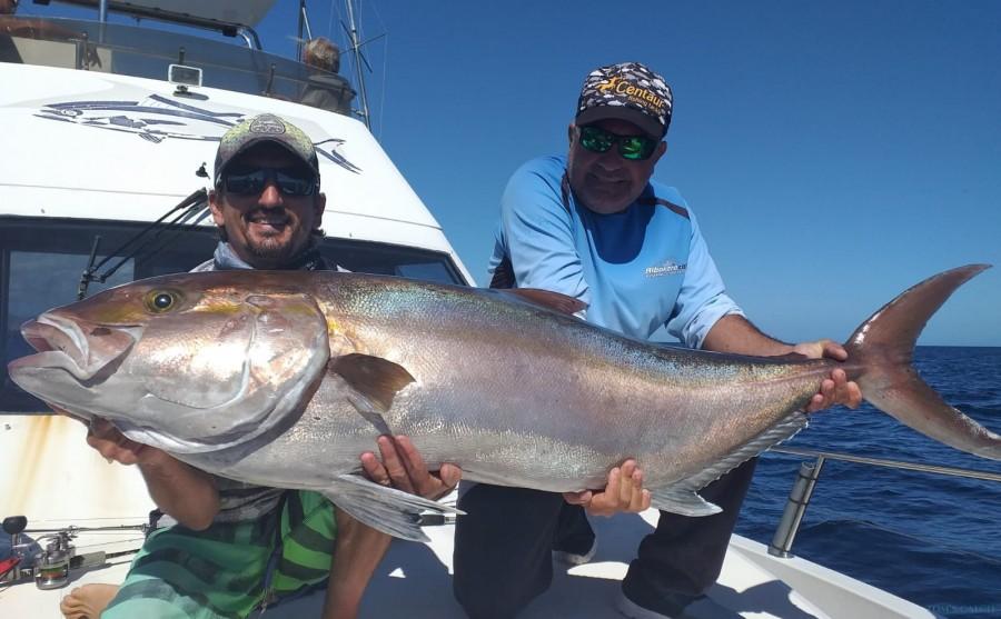 Charter de pesca ALBAKORA CAT II