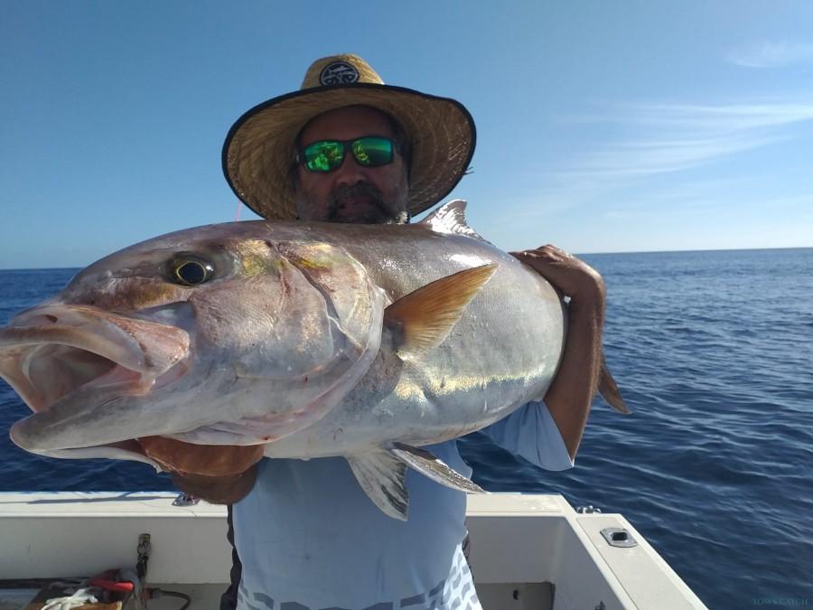 Charter de pesca AlbakoraCat