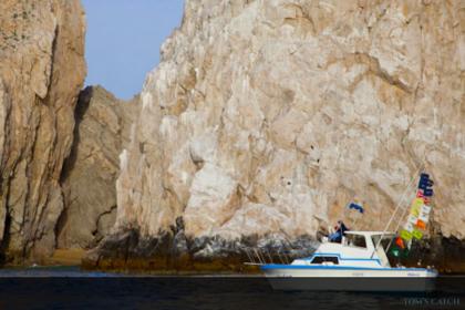Andrea Baja California Sur pesca