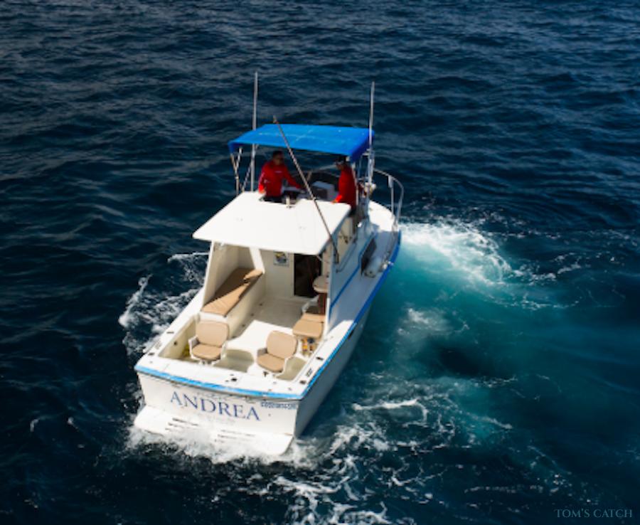 Charter de pesca Andrea