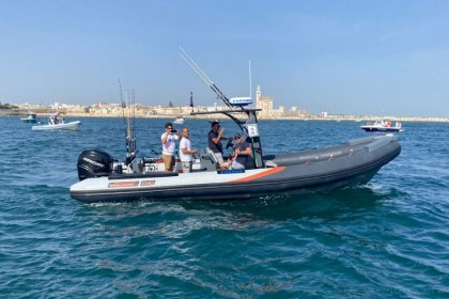 Charter de pesca Barca 550