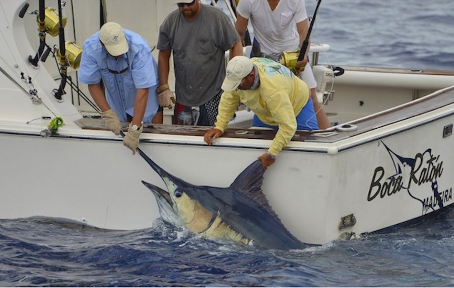 Charter de pesca Brasilia