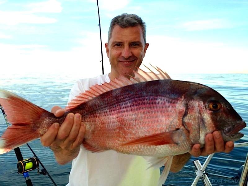 Charter de pesca Bravo