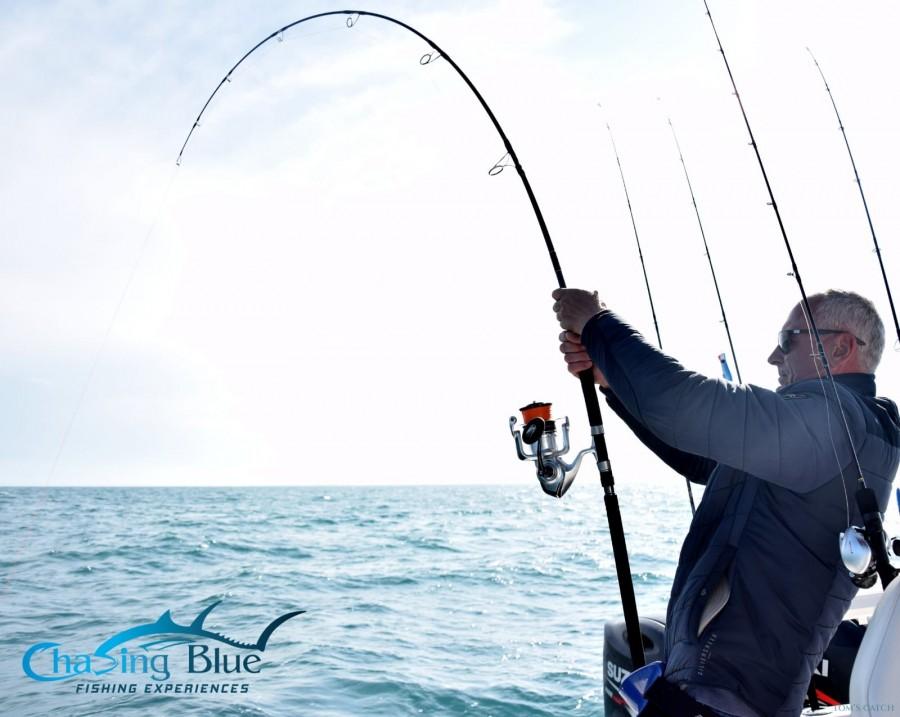 Charter de pesca Chasing Blue