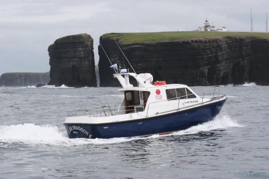 Clare Dragoon Irlanda pesca