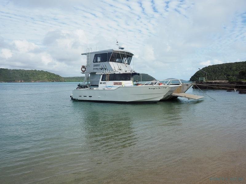 Charter de pesca CY Fishing Charters