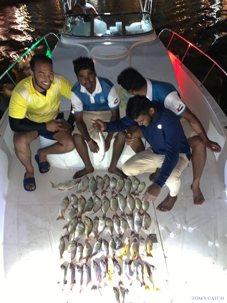 Charter de pesca D3-7