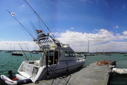 Donzela Algarve pesca