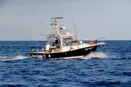 Dream Catcher Madeira pesca