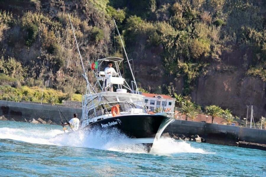 Charter de pesca Dream Catcher