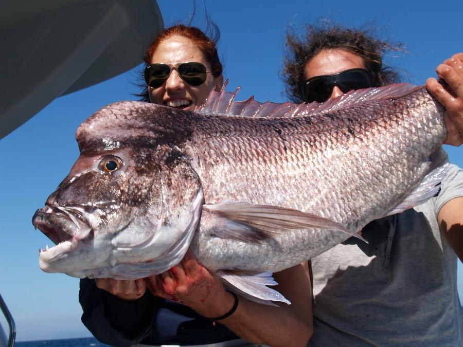 Charter de pesca El Natilla