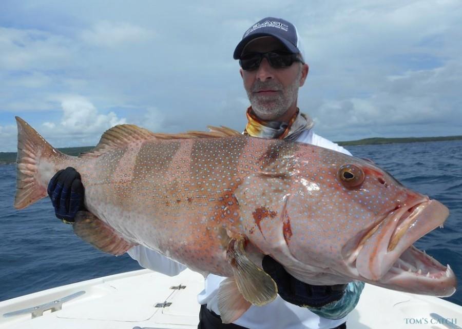 Charter de pesca Emeraude II
