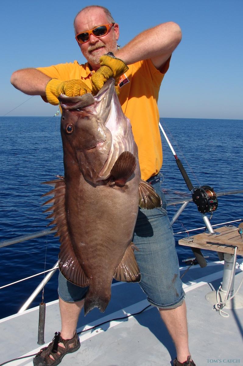 Charter de pesca Foramando