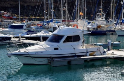 Gatufas Islas Canarias pesca