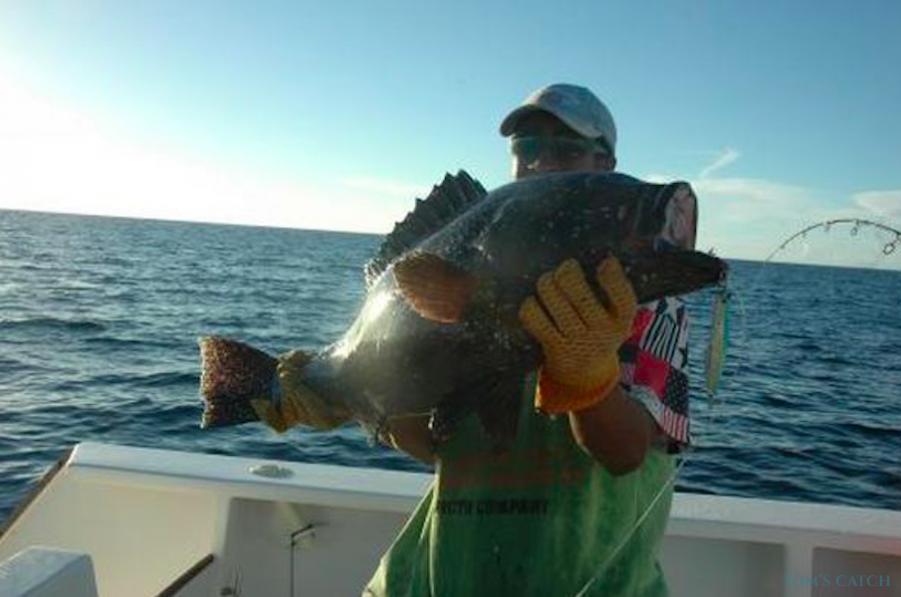 Charter de pesca Gwen
