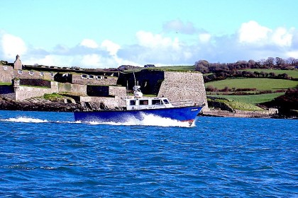 Harpy Irlanda pesca