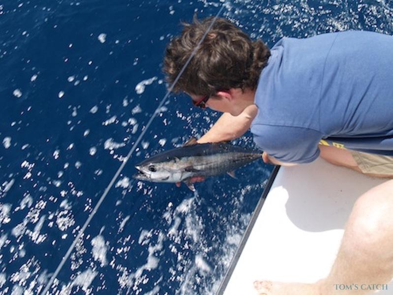 Charter de pesca Il·lusio