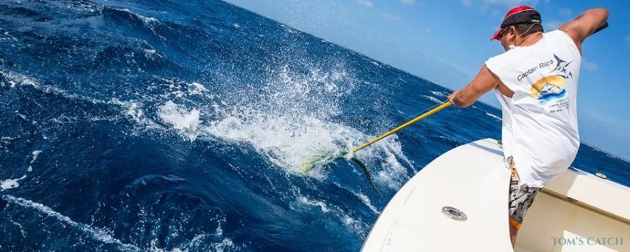 Charter de pesca Intimidator