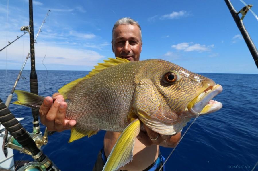 Charter de pesca Kikao