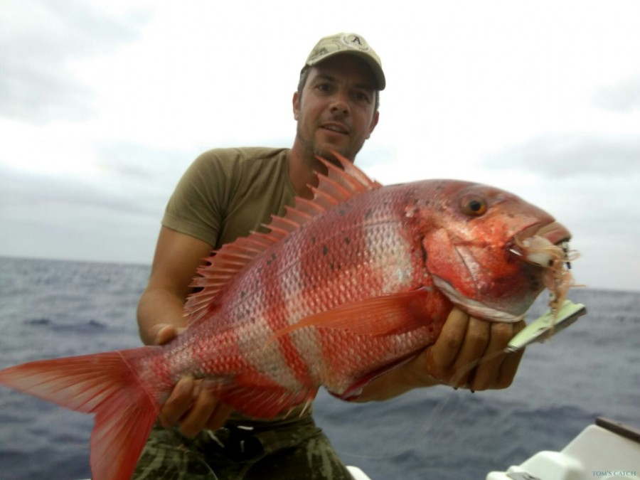Charter de pesca La Graciosa
