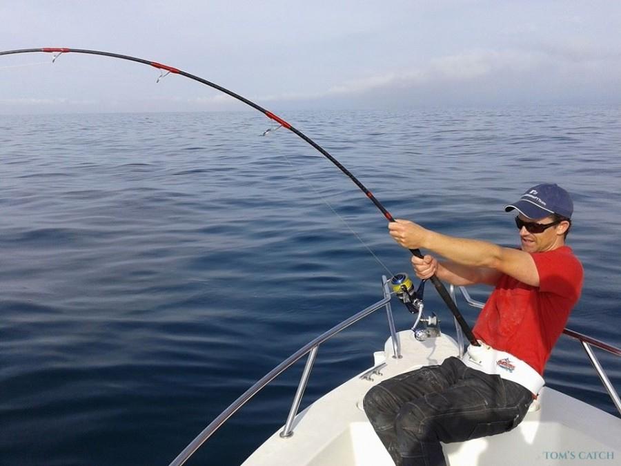 Charter de pesca Llobarrete VI