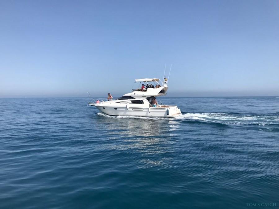 Charter de pesca Lovit Charter