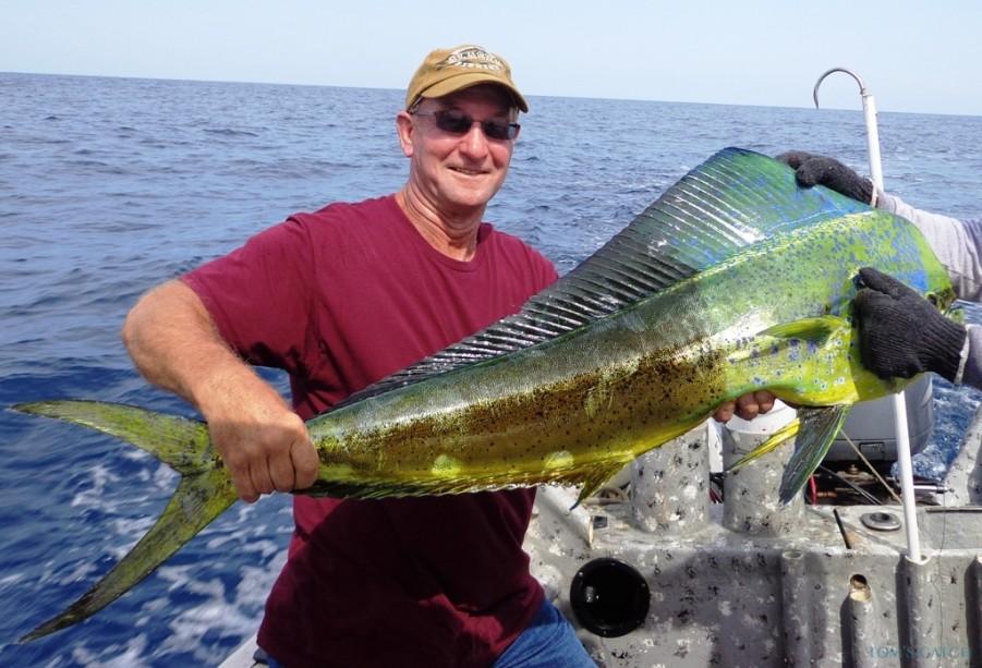 Charter de pesca Mahi Dreamer - Offshore
